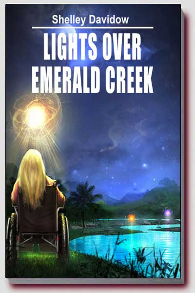 Girl in wheelchair looking at lights over emerald creek
